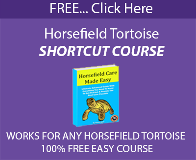 Horsefield shortcut course