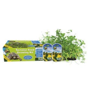 ProRep KPT005 Tortoise Feed Growing Kit